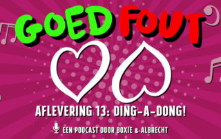 Goed Fout 13